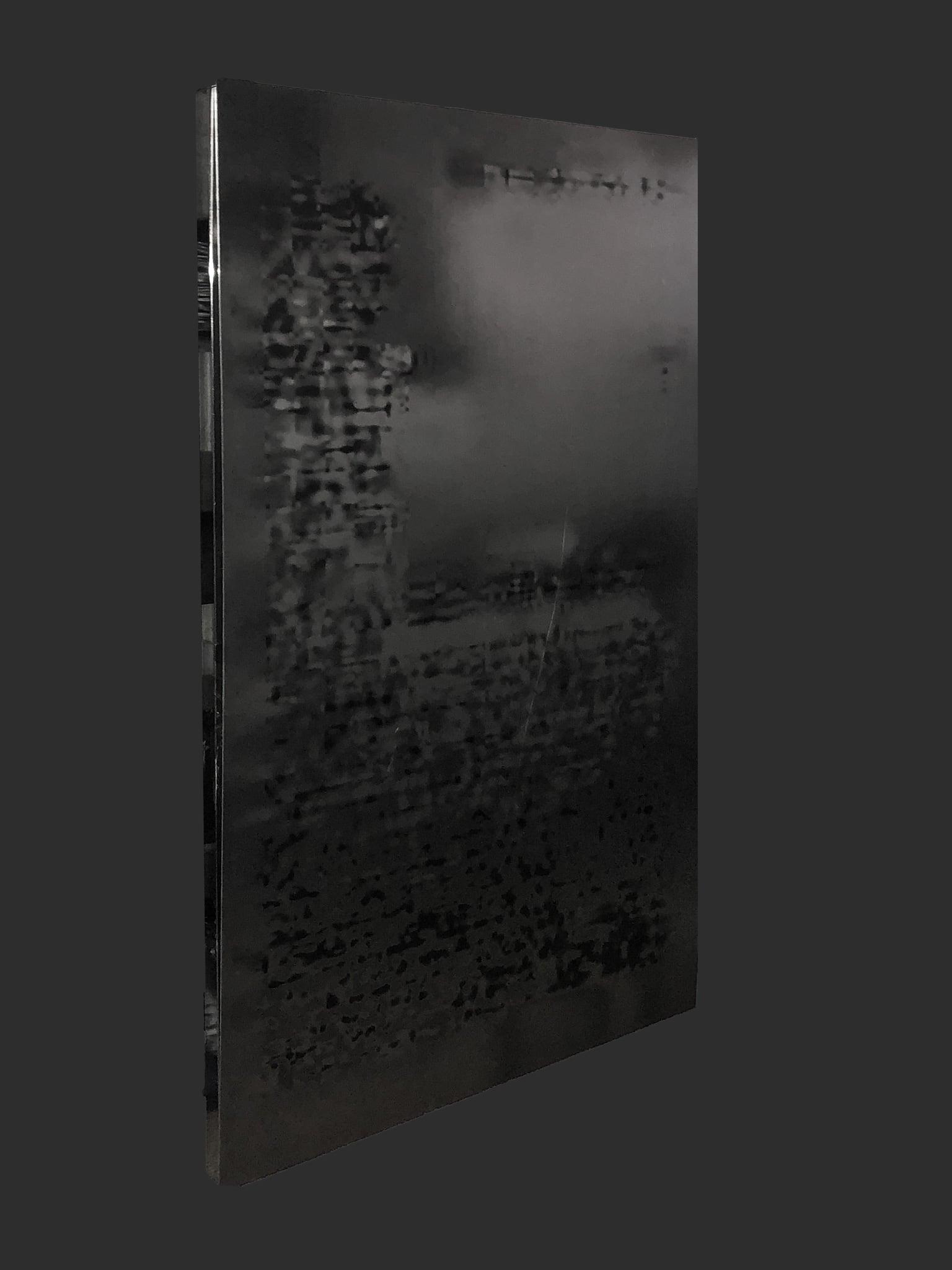 <p><i>Multispec</i> - Plated, 2020. UV Pigment Prints on Aluminum Plate, 1450 x 850mm. </p>